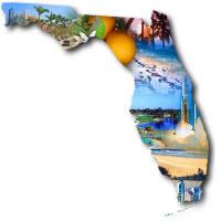 Florida Website